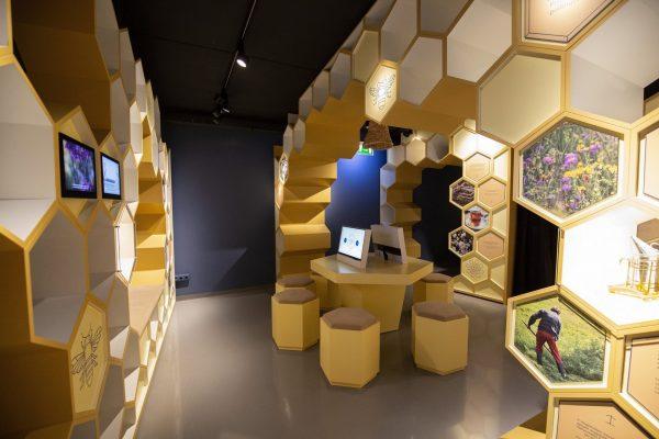 Keszthely, 2020. szeptember 22. A Kis-Balaton Látogatóközpont interaktív kiállítása a központ átadásának napján Keszthely külterületi településrészén 2020. szeptember 22-én. MTI/Varga György